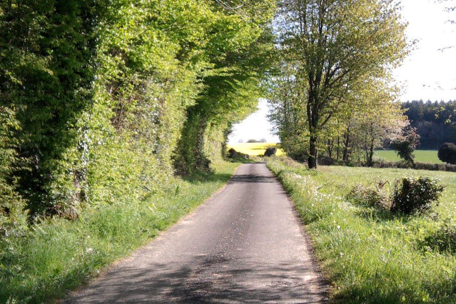 Quiet country lanes